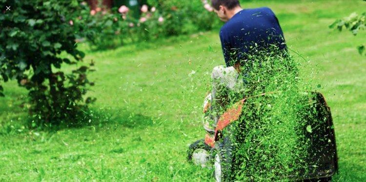 Man har fået gæster i weekenden og skal til at nyde samværet ude i haven... indtil naboen klokken halv tre begynder at slå græs med sin nye, dejlige, men larmende motorplæneklipper.