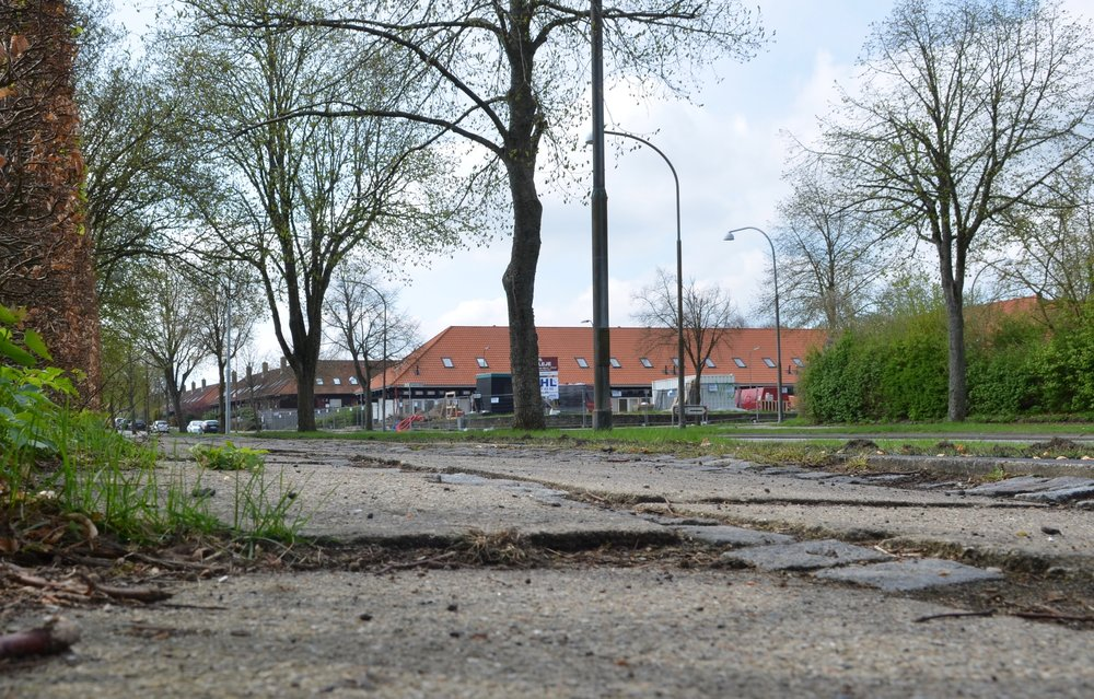 Dagens foto af fortovene på Blovstrød Allé - de har det ikke for godt. Foto:AOB