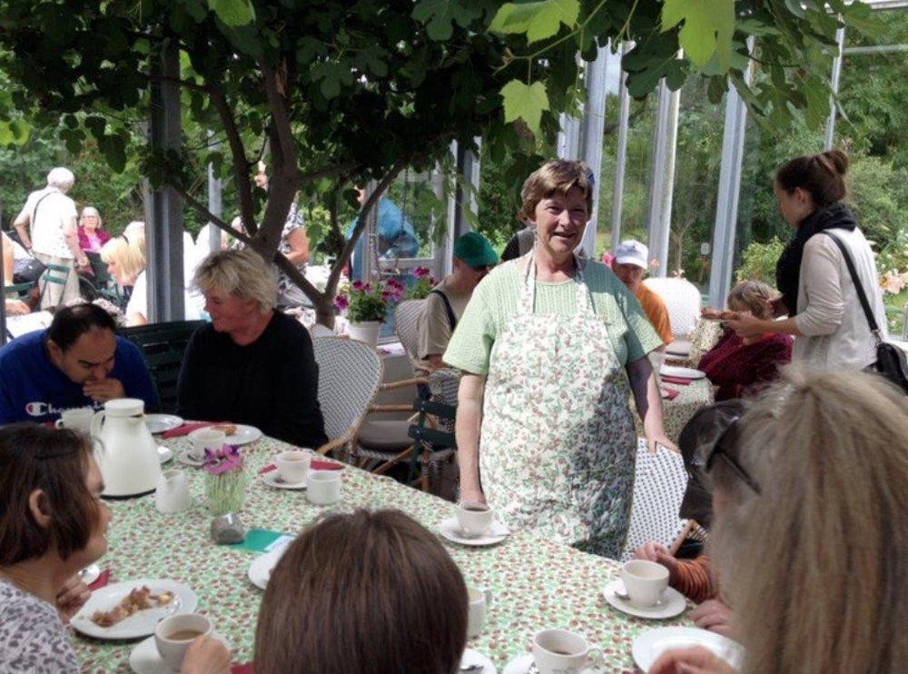 Der var sort af mennesker, da Ninas Naturcafé i går -onsdag, den 11. juli - fejrede caféens 20 års fødselsdag. Foto: AOB