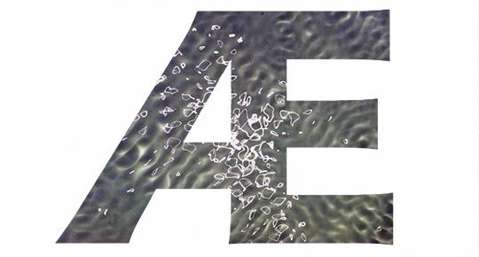 27ef868543abf9c4e16439c1aeb8f0bd.jpg