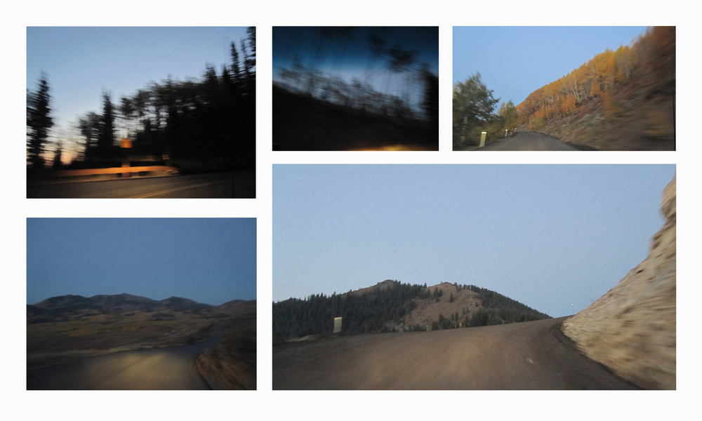 Blur Photoset1.jpg