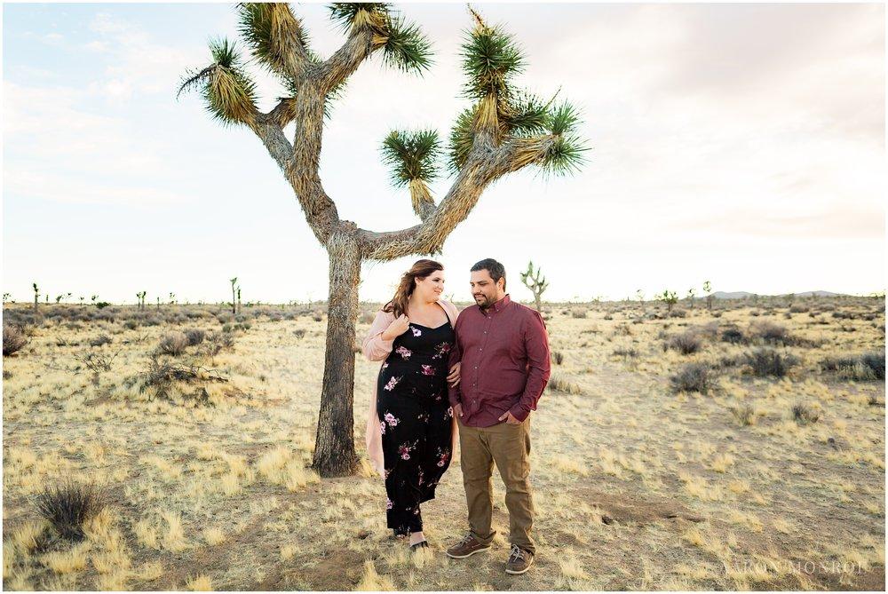 Joshua_Tree_Engagement_Los_Angeles_Wedding_Photographer_0235.jpg