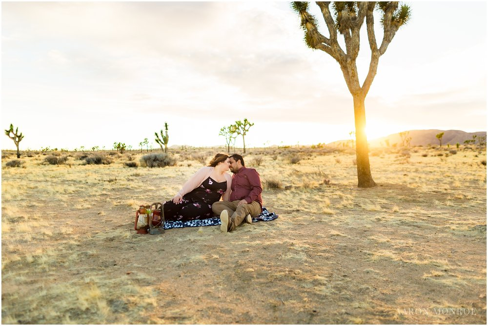 Joshua_Tree_Engagement_Los_Angeles_Wedding_Photographer_0238.jpg