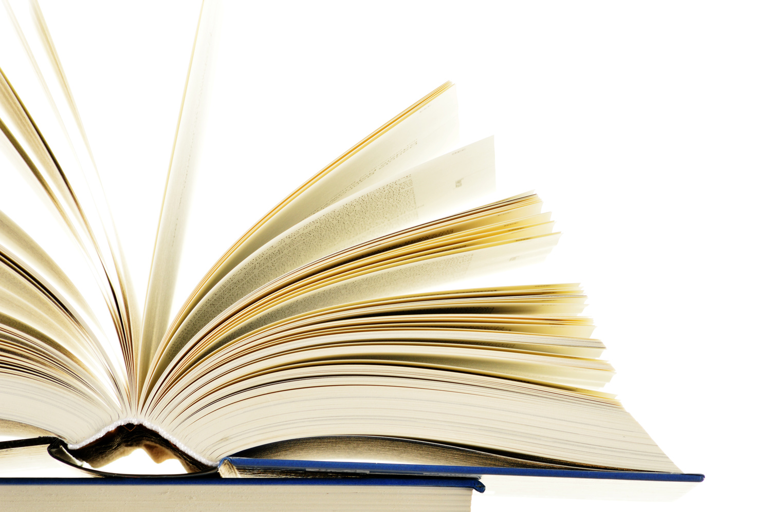Power up your business book reading — Your Entrepreneurial Spirit