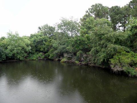 pond-park2.jpg