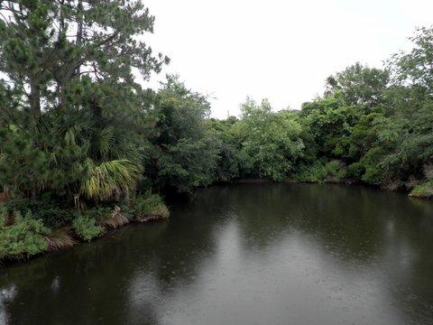 pond-park1.jpg