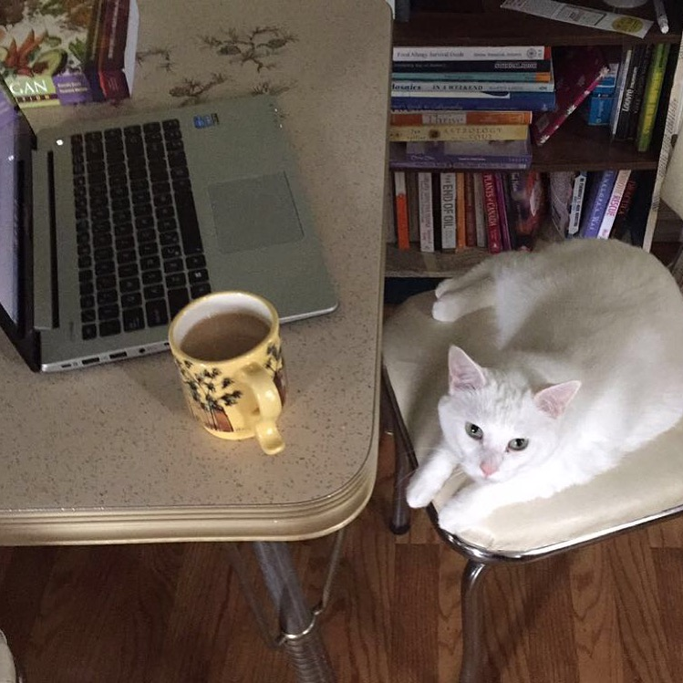 Betty, sipping some coffee and getting her research on.