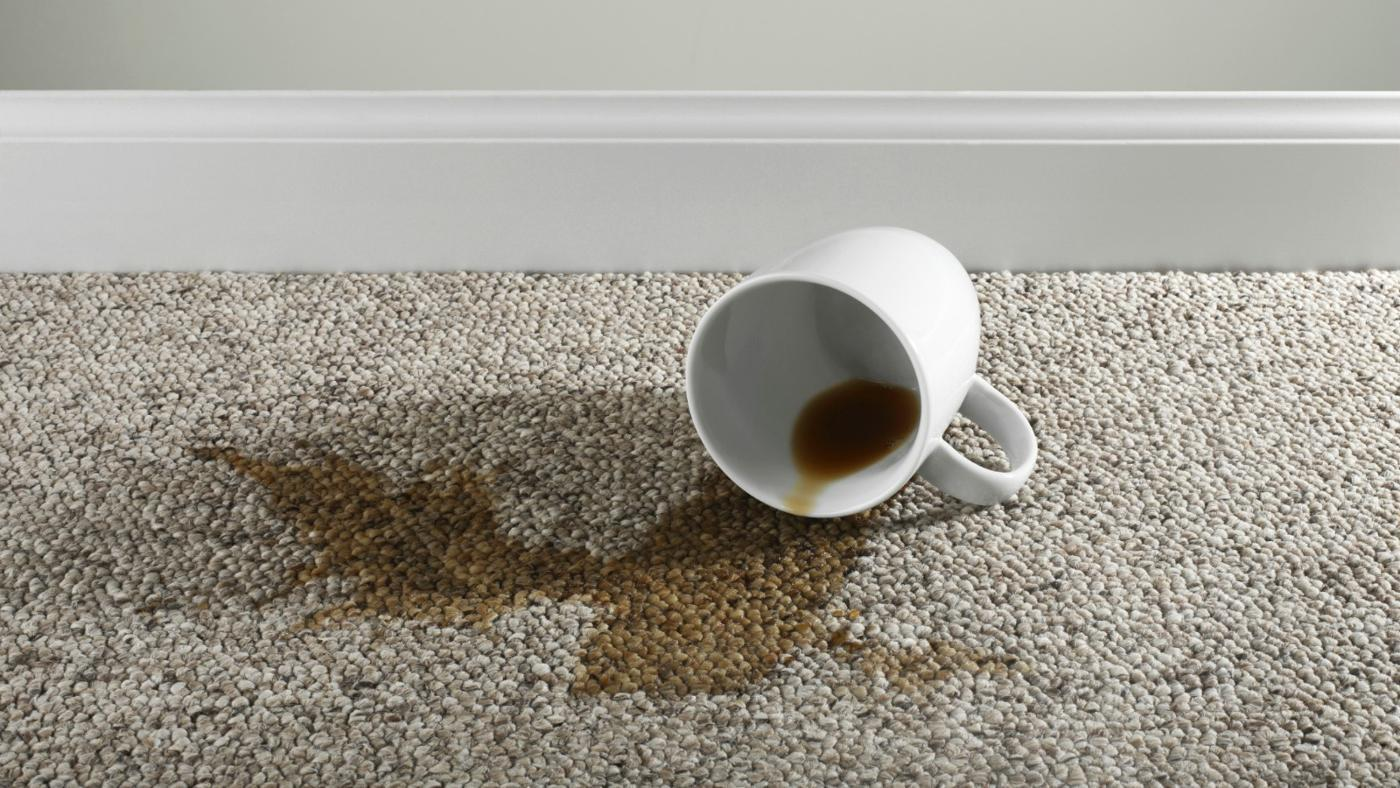 Amazing A Z Carpet Stains And How To Remove All Of Them