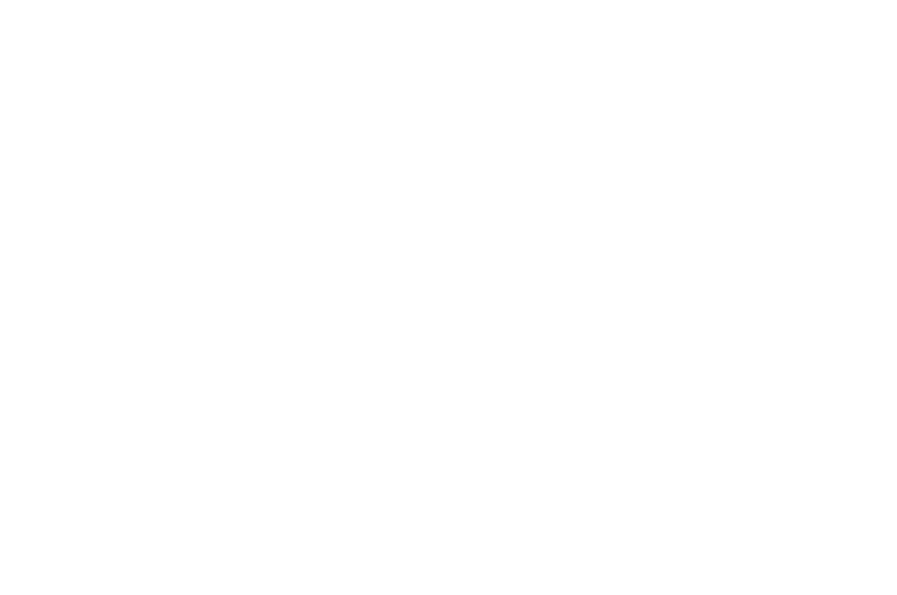 OFFICIAL SELECTION - Chelsea Fashion  Film Festival - 2017 (1).png