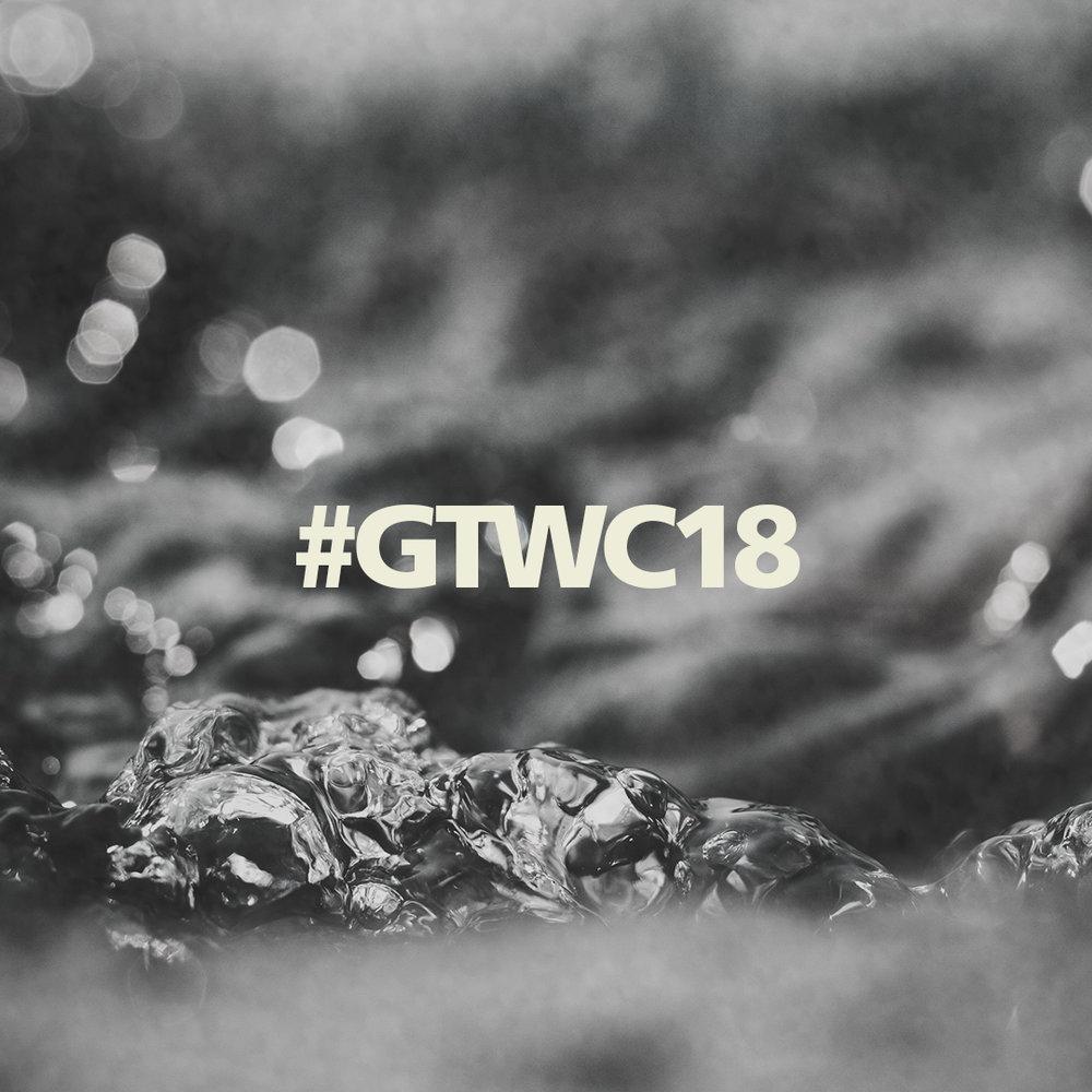 #GTWC18 #3.jpg