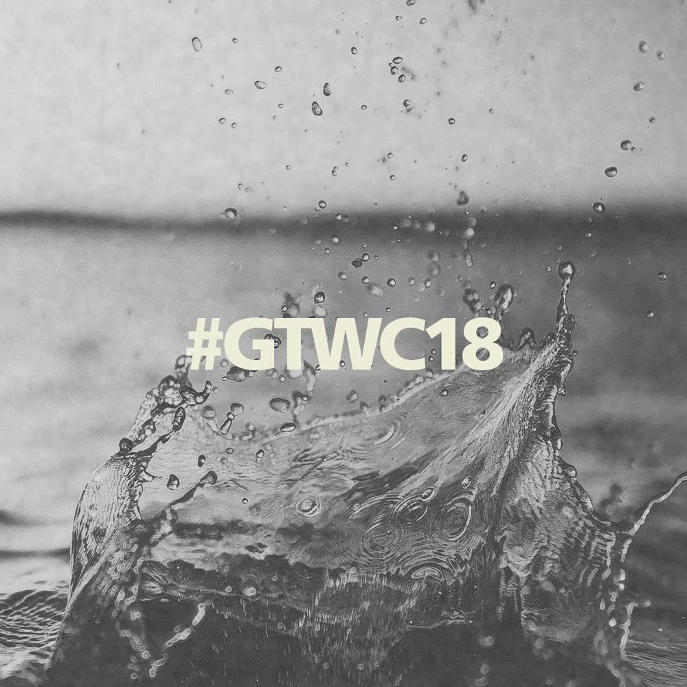 #GTWC18 #2.jpg