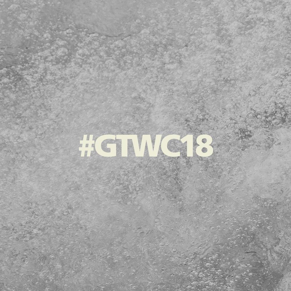 #GTWC18 #1.jpg