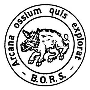 BORS logo