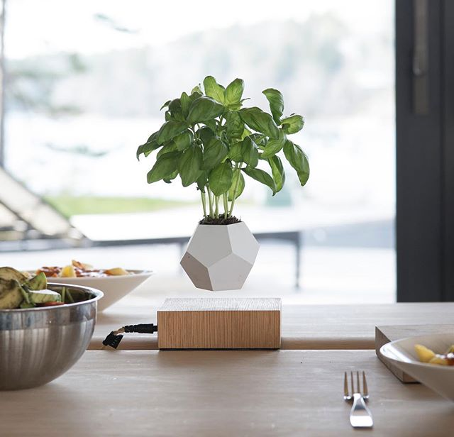 Give your dinner guests something to talk about, with #Lyfe. - - - #flyte #lyfe #plants #levitation #fresh #sunshine #gardening #tree #free #style #onstyle #onpoint #garden #nature #earthporn #interiordesign #interiordecoration #homeinspo #interior #design #architecture #coolproducts #plants #ferns #minimalist #scandinaviandesign #swedishdesign #nordicdesign