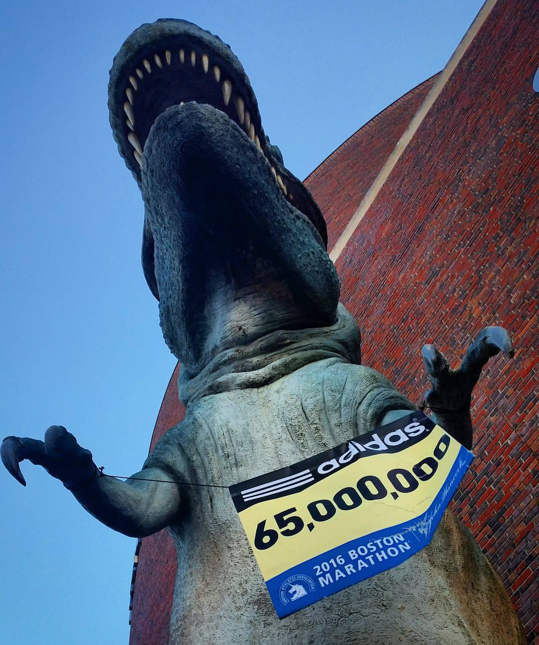 How Fast Could a T-rex Run a Marathon? — Ian - photo#10
