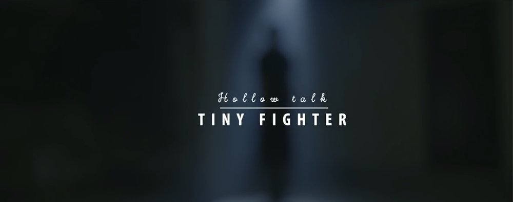 Tiny Fighter