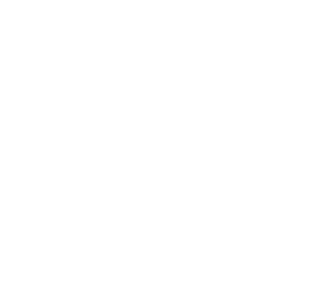 transit train icon