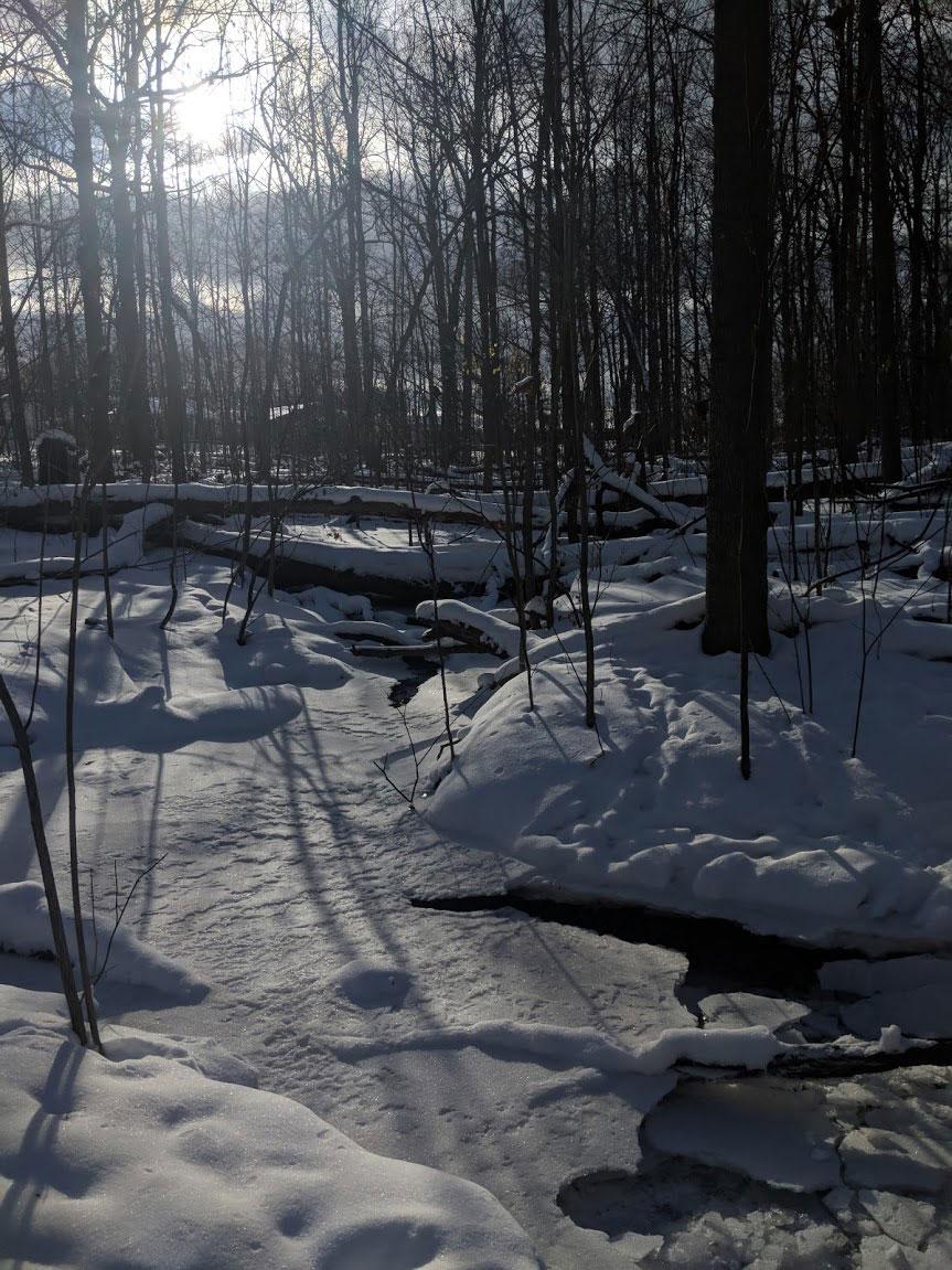 EH Sherman Art - Winterforms