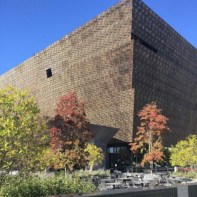 Fall 👑 . . . . #fall #thesmithsonian #nmaahc #apeoplesjourney