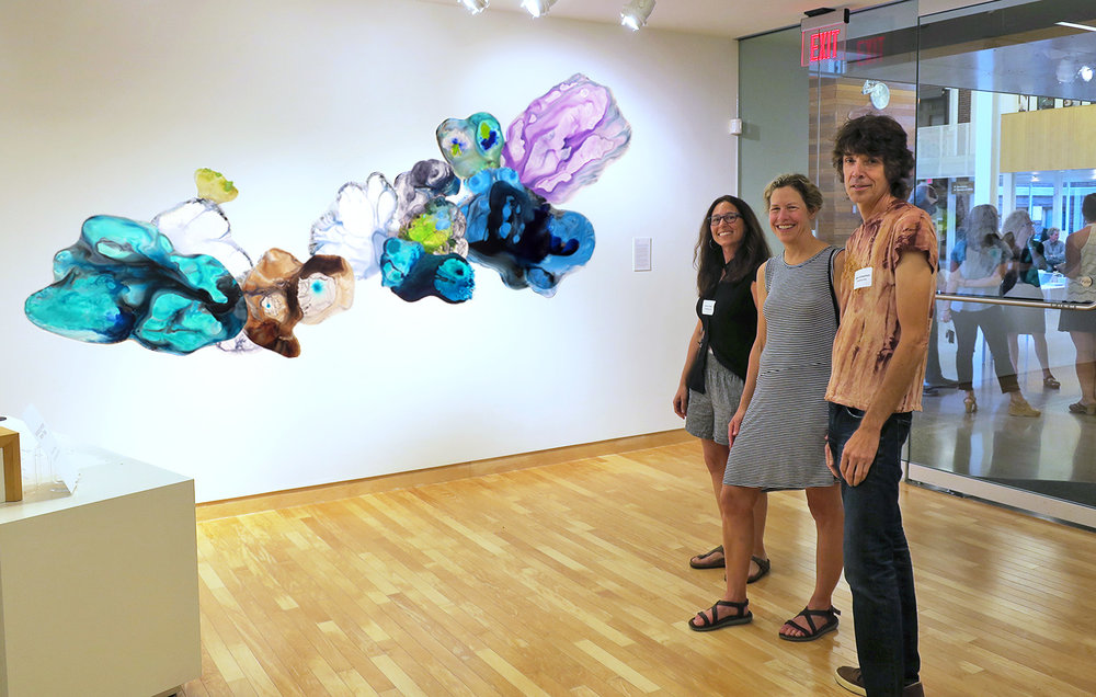 Pulchra Scientia: The Aesthetics of Discovery  at Carleton College's Perlman Teaching Museum