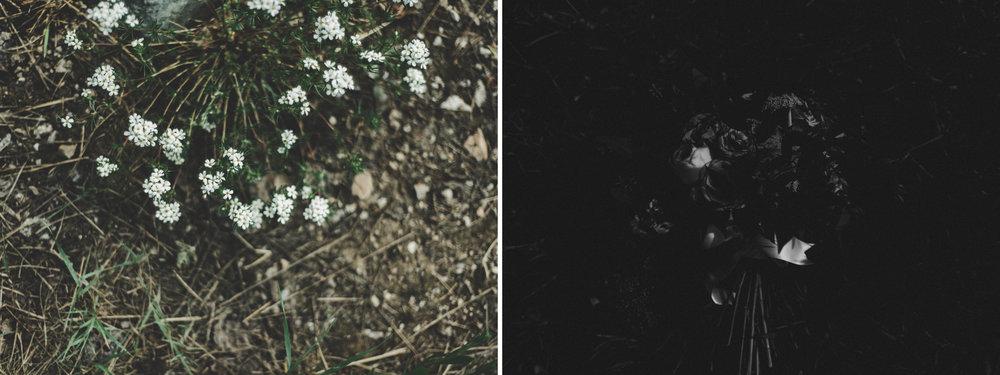 alyssasorenson-solitudeutahwedding-26.jpg