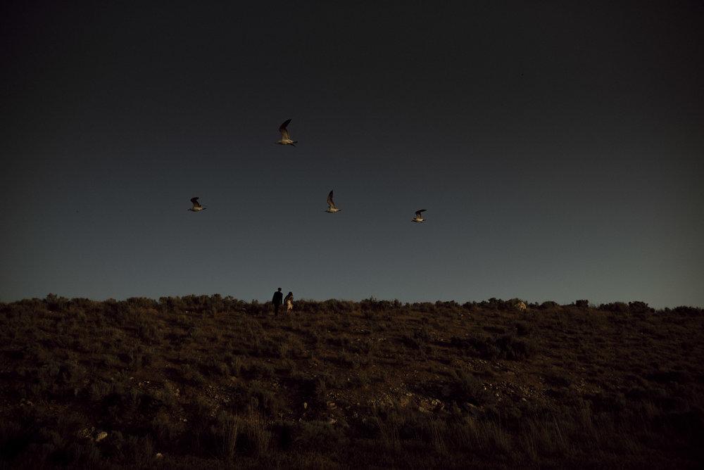 antelope island formals _ alyssa sorenson-58.jpg
