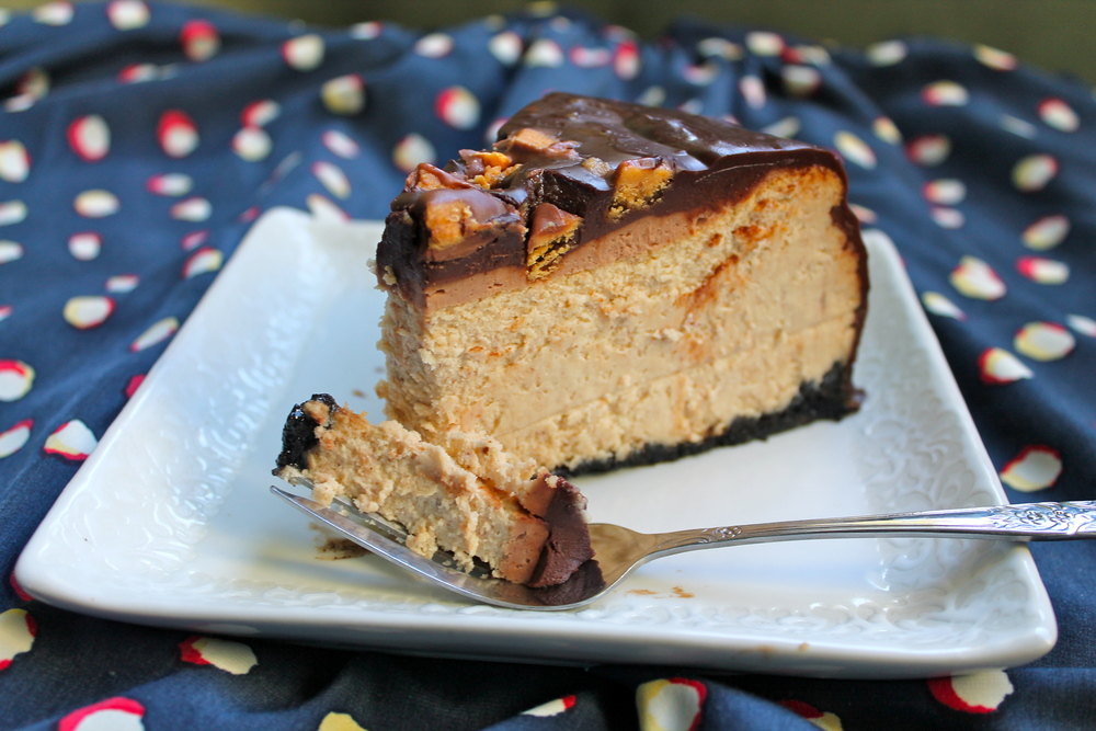 Chocolate and Peanut Butter Cheesecake