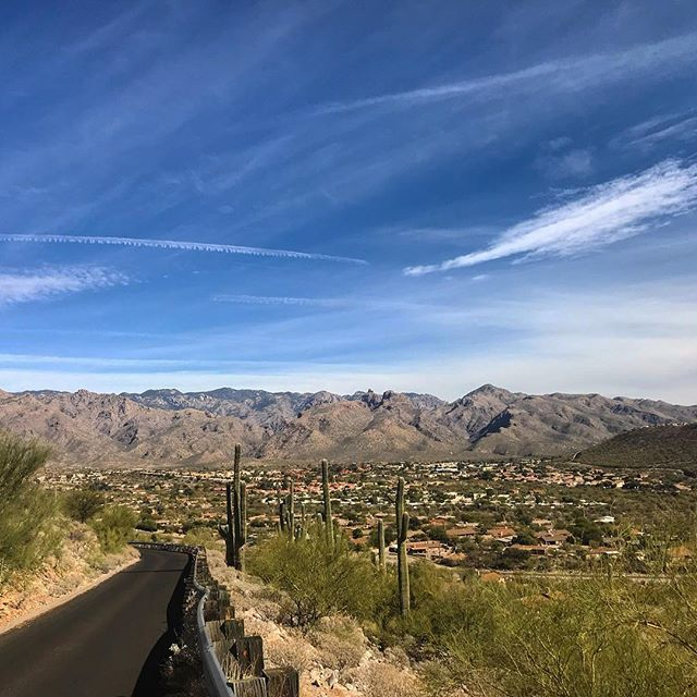 My skin hasn't seen sun or heat like this in months.  After living in Portland for nearly three years, I forgot how warm Tucson is in the winter. I'll admit, I kind of miss it. 😎