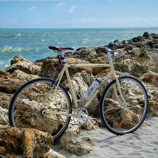 James' Surly Travelers Check is getting good use on Sanibel Island this week. This sweet setup gets your bike on a plane for the price of a normal checked bag.  #travelbike #sandscouplers #surlybikes #handbuiltwheels #customwheels #beach #bicycles #ridebikesallday #ridebikeseveryday