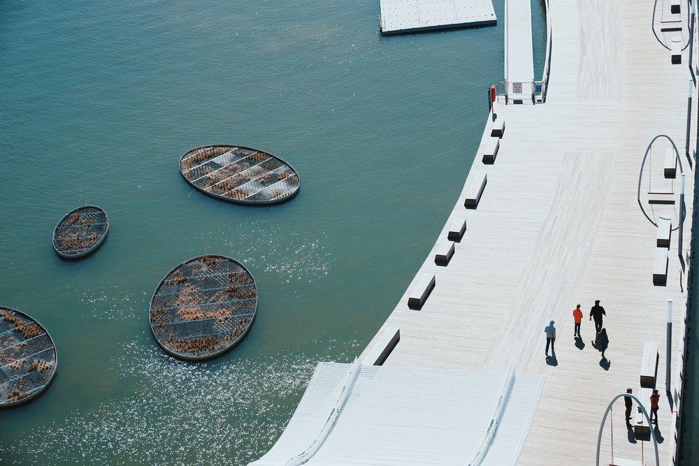 EF Wharf 17.jpg