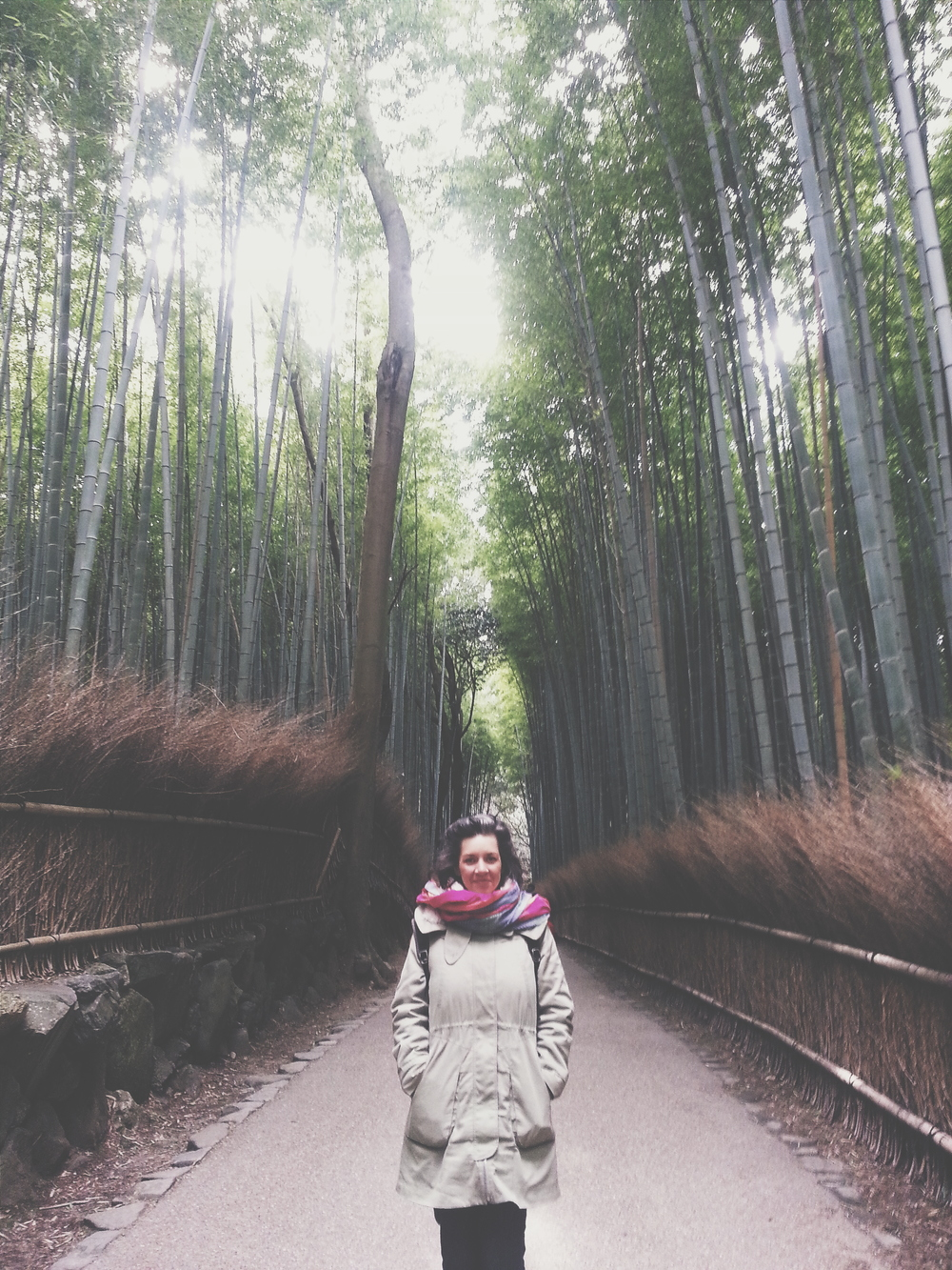 Pretended like we were all alone in the Bamboo Forest of Arashiyama Cost: Free