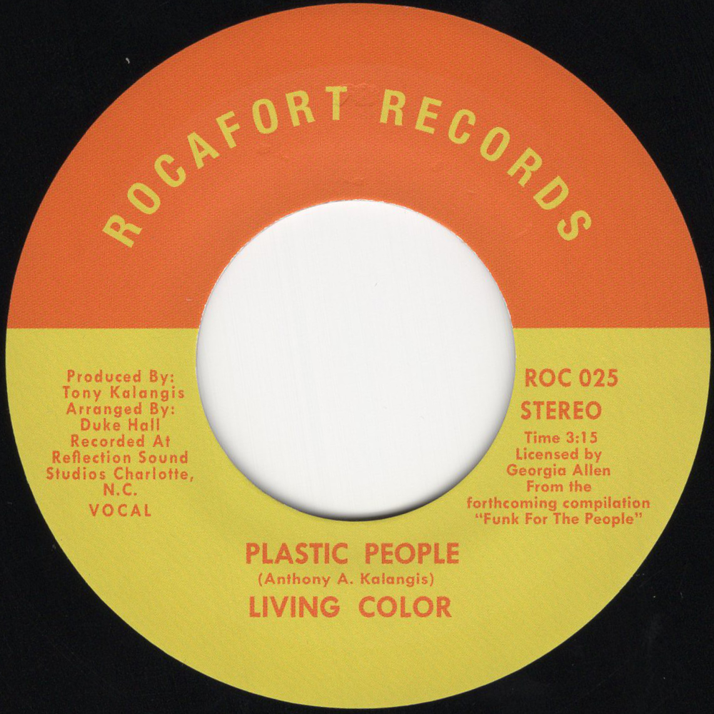 living color - plastic peopke.png