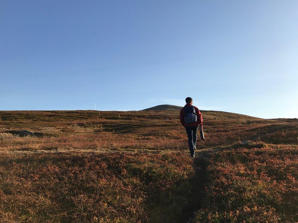 Hiking up the Storsteinen