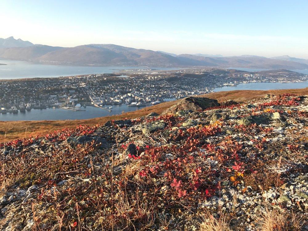 Tromsø seen from Storsteinen