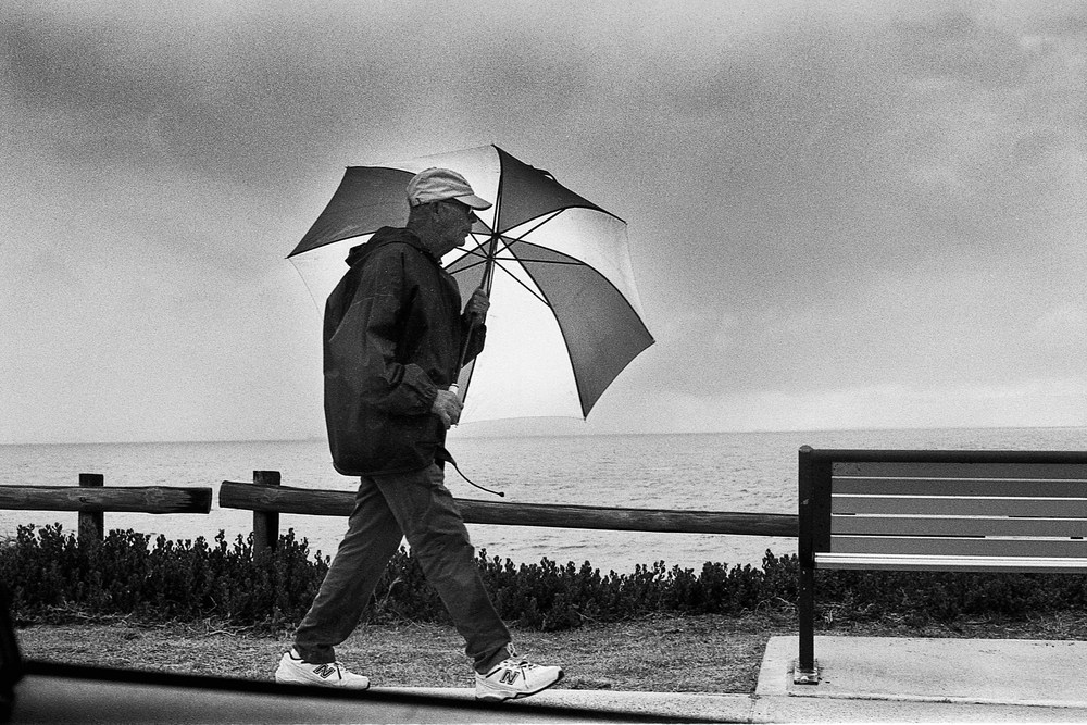 Cottesloe umbrella (1 of 1).jpg