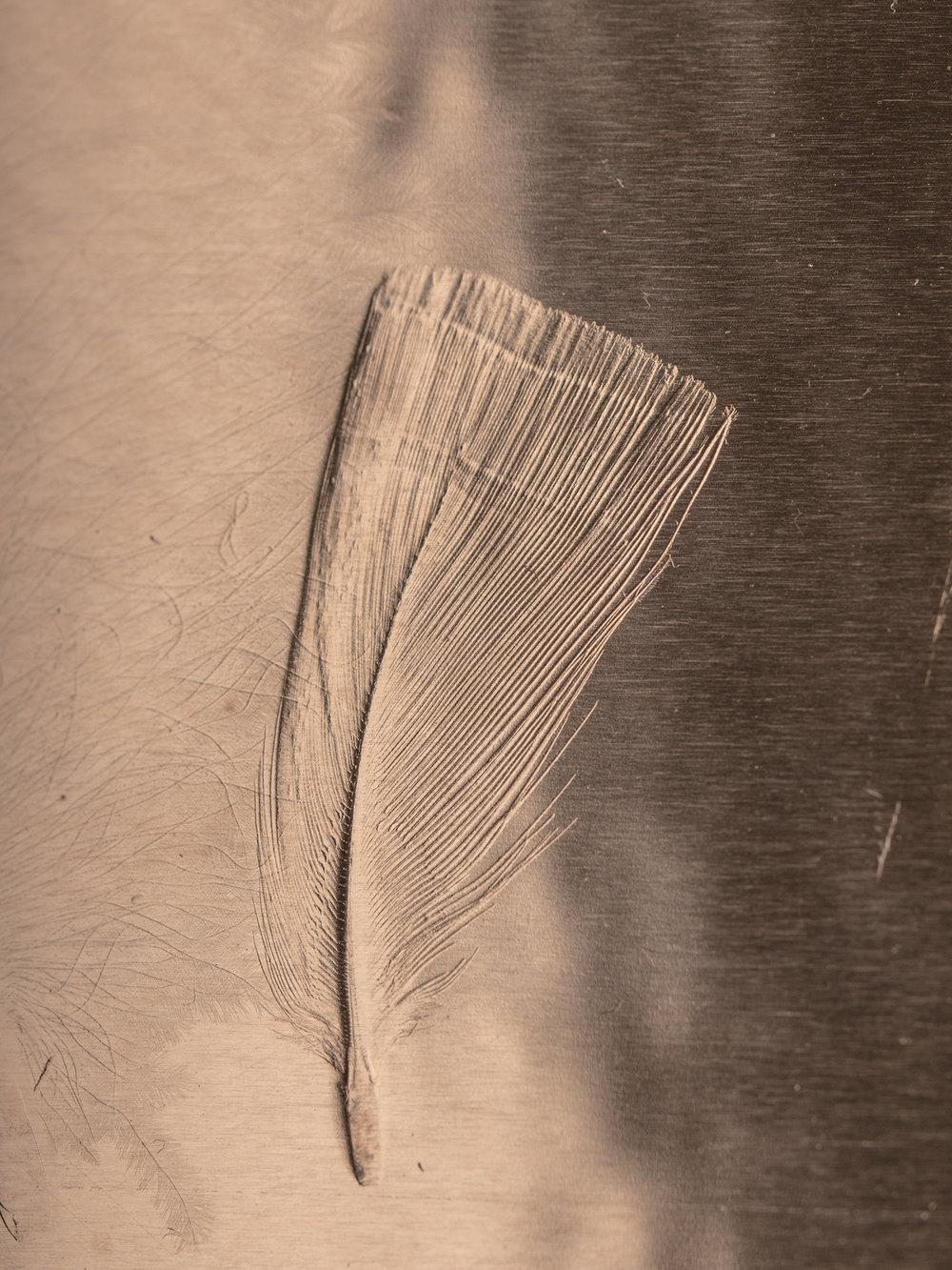 Christina-Pauls-Feder-Kupfer-Federbild-Detail.jpg
