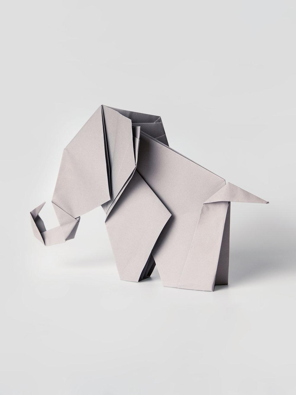 Origami Figur Elefant  Origami figure Elephant