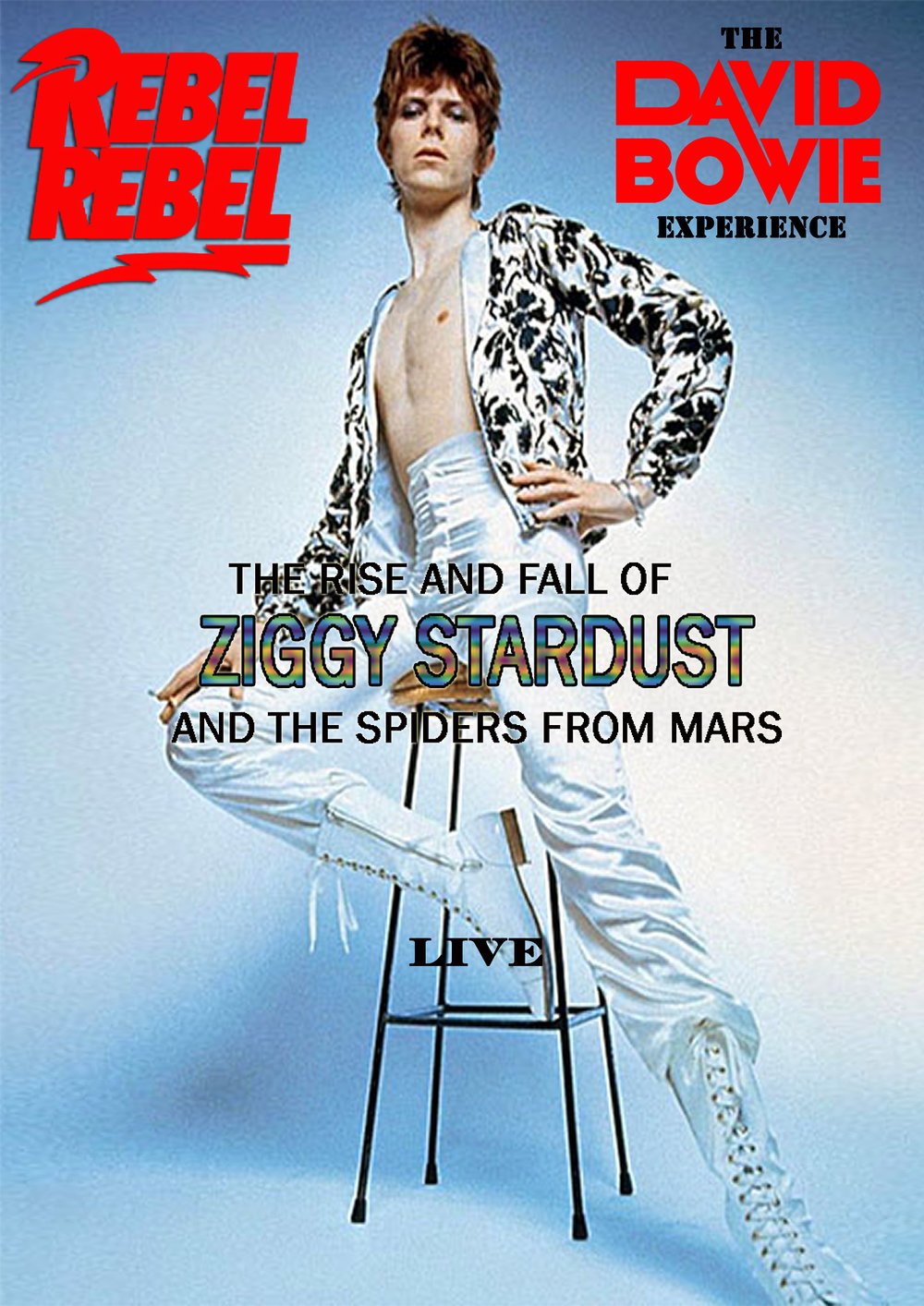 Rebel Rebel: The Rise And Fall Of Ziggy Stardust And The Spiders