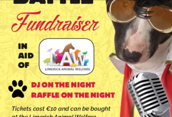 Limerick Animal Welfare lip sync Battle in Dolans Warehouse on July 7th