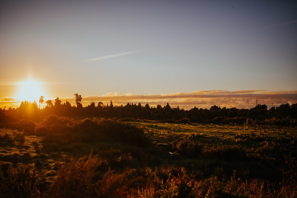 New_zealand_road_trip_westcoast_hokitika-62.jpg