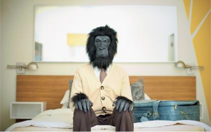 El-animal-que-llevas-dentro_zen-driving_Prevensis.jpg