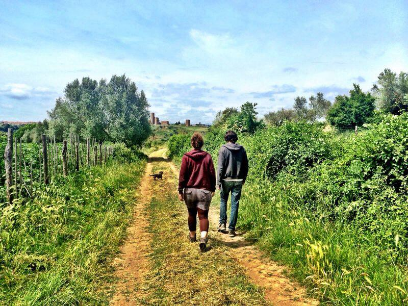 countryside, walk, romantic, fun, sun