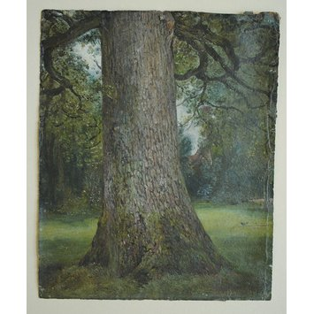 V&A London Constable Elm Tree Painting