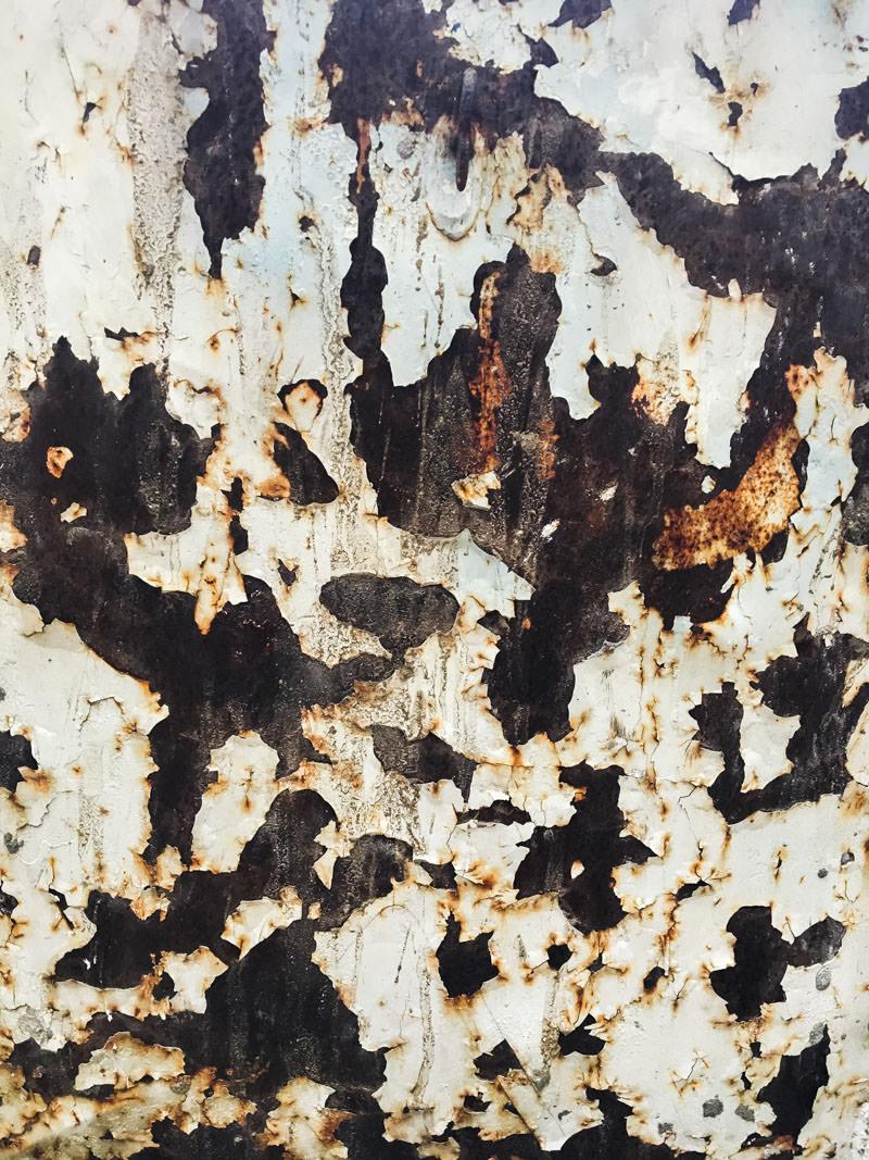 Finnin Art Constable Tree V&A London