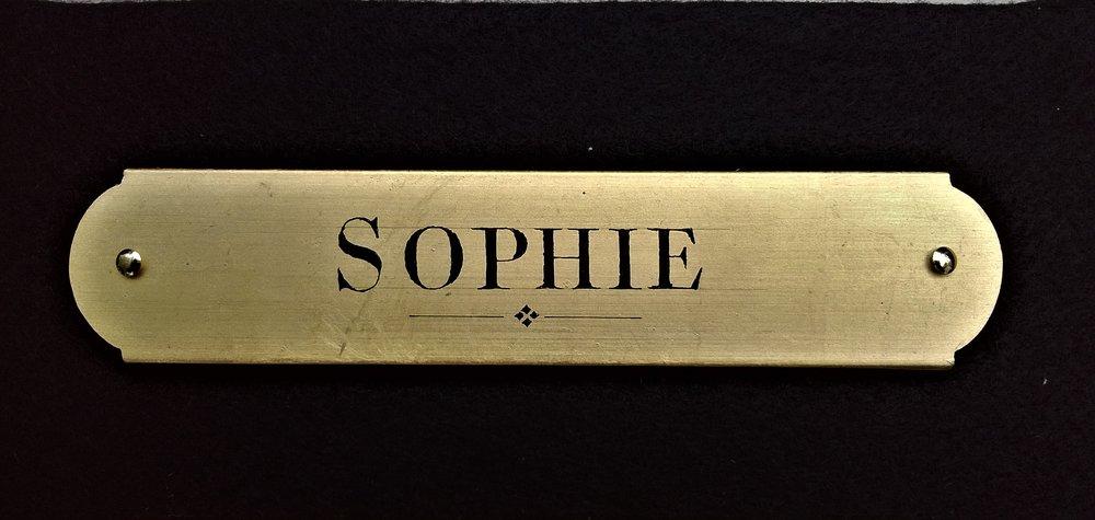 """'Sophie', 1"""" x 5"""", brass pins"""