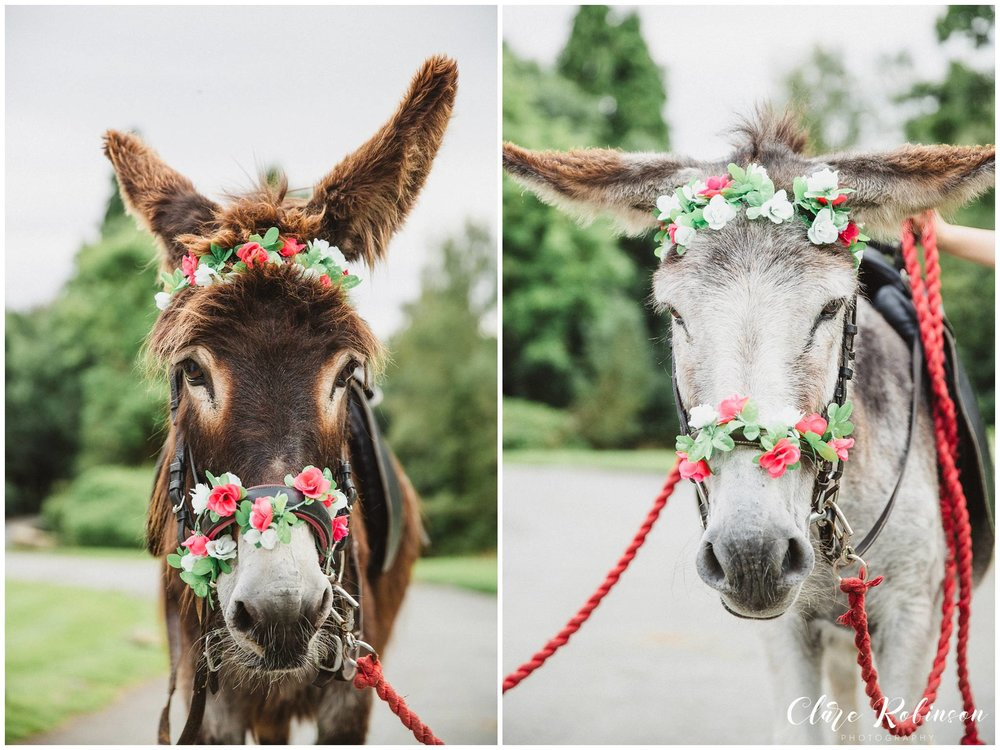Two portraits of two donkeys both wearing floral crowns for a boho festival wedding at Rivington Barn - Lancashire Wedding Photographer