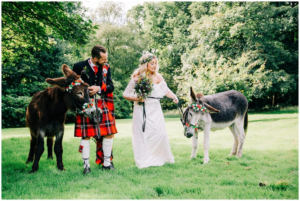 donkeys with brides and groom at rivington hall barn