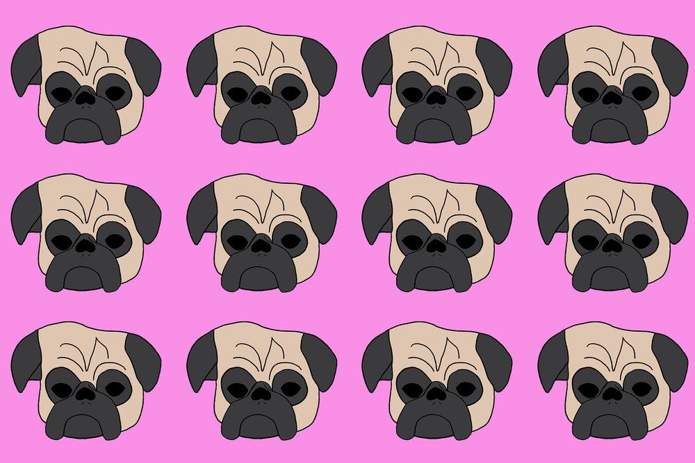 Pugs on Pink rug.jpg
