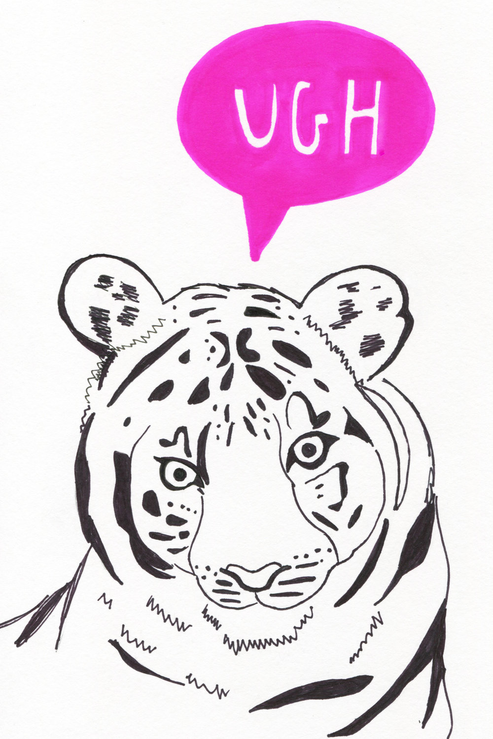 Annoyed White Tiger 4x6.jpg