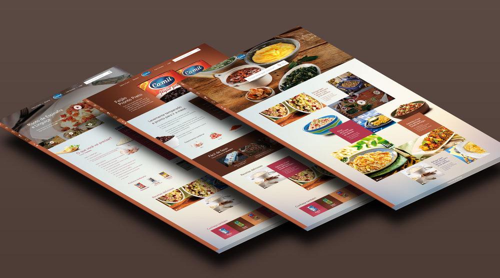 camil_presentation.jpg